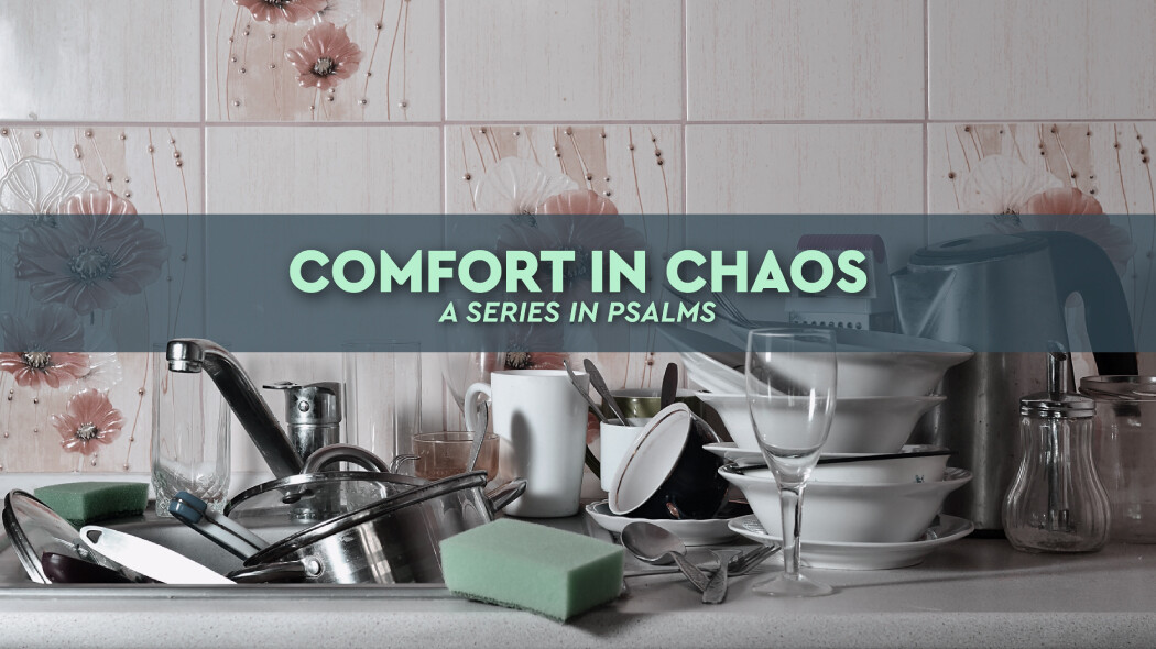 Comfort in Chaos
